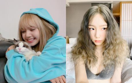 Top 6 ảnh selfie hot nhất Kpop đầu năm 2019: Tin được không, 1 sao Việt vinh dự góp mặt?